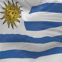 """外媒:乌拉圭企业借电子商务进军中国 欲当""""拉美门户"""""""