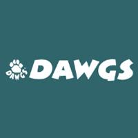 DAWGS 美国女鞋购物网站