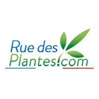 Ruedesplantes法国植物精油疗法天然化妆品牌网站