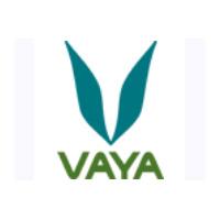 Vayalife美国不锈钢餐盒品牌网站