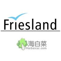 Friesland德国瓷质餐具品牌网站
